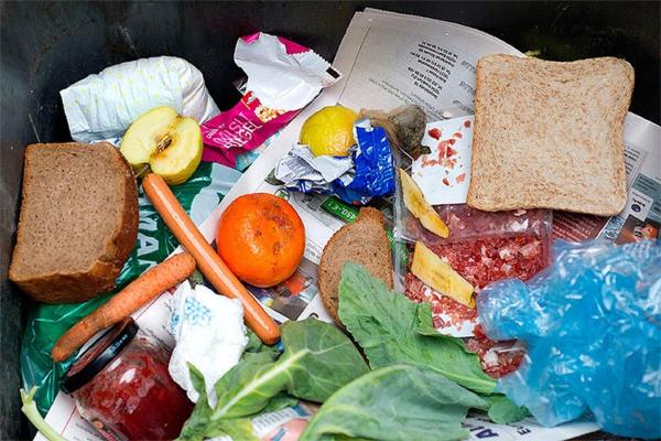 Эксперты оценили стоимость выброшенных жителями РФ продуктов в 1,6 трлн рублей