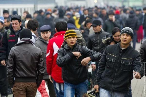 Мигранты заменят россиян на рынке труда России