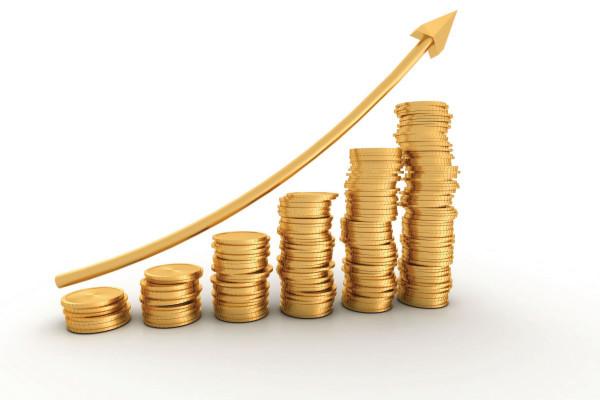 Эксперты обнаружили «нестыковки» в данных о доходах граждан РФ