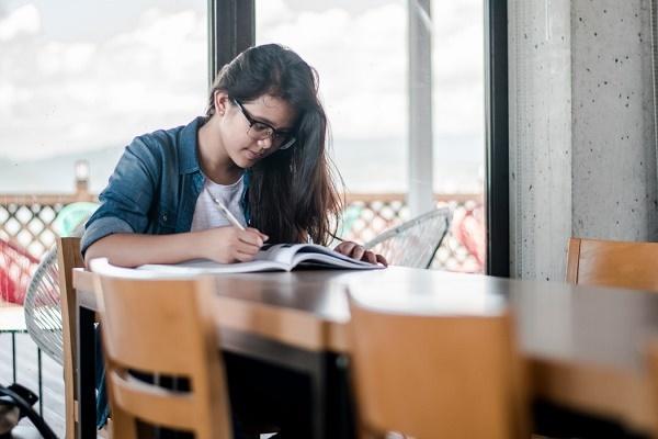 Почему бизнес по написанию курсовых и дипломов процветает, несмотря на запреты