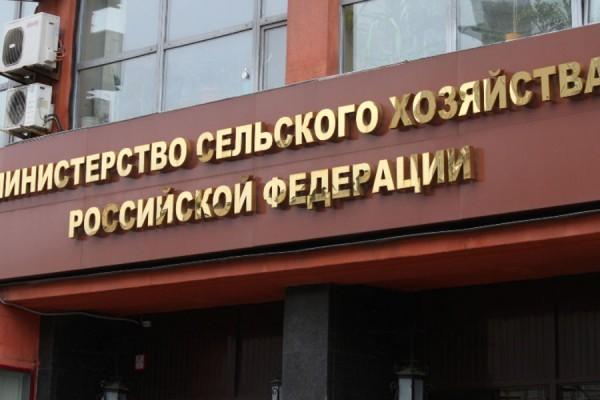 В Минсельхозе после оценки экспертов заявили об обеспеченности жителей РФ едой