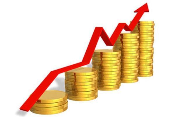 Оборот торговли между Индией и Приморьем увеличился на 22 %